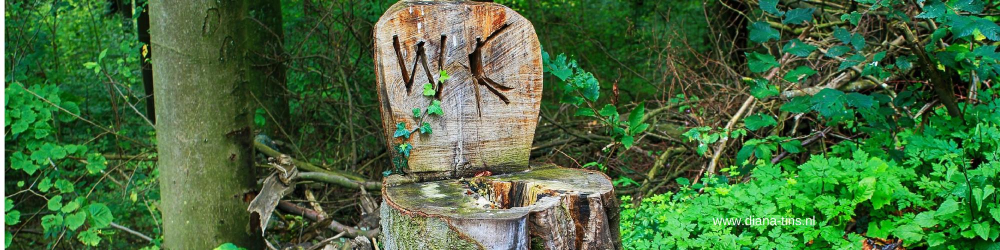Natuurlijke wc reiniger [DIY Tip]